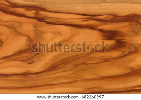 Empty olive wood texture background copy space. Hi res photo.