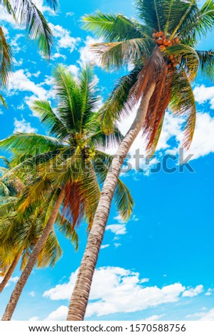 Empty paradise beach, blue sea Beautiful tropical island. Holiday and vacation concept, vacation in Asia