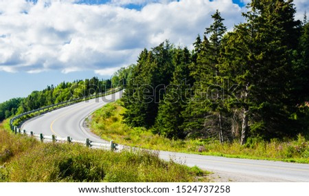 Empty paved asphalt road with guard rail curving downhill around grove of trees under cloudy sky. #1524737258