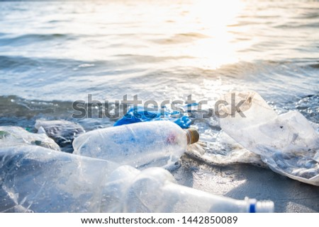 Empty plastic bottles on the beach, seashore and water pollution concept. Trash (empty beverage packages) thrown away at the seaside, close-up view in direct sunlight ストックフォト ©