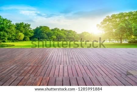 Empty Plaza Floor Bricks and Beautiful Natural Landscape #1285991884