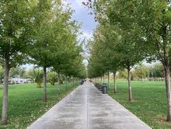 empty public park walking way view