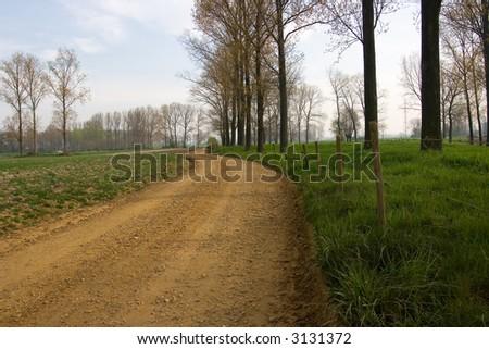 Empty road #3131372