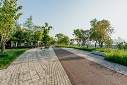 empty road in city park