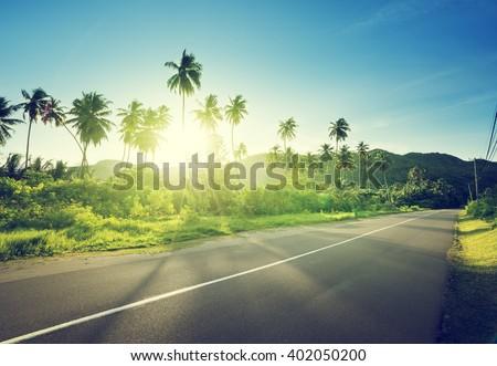 empty road in jungle of Seychelles islands