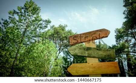 Empty road signs isolated on nature background. Colorful signboards. #1440667175