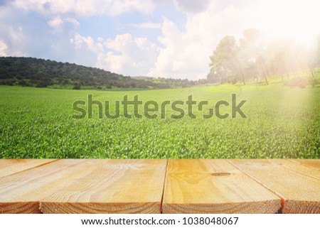 Empty rustic table in front of countryside background. product display and picnic concept #1038048067