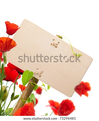 empty sign for message on a wooden panel, green plant and poppies - image is isolated on a white background