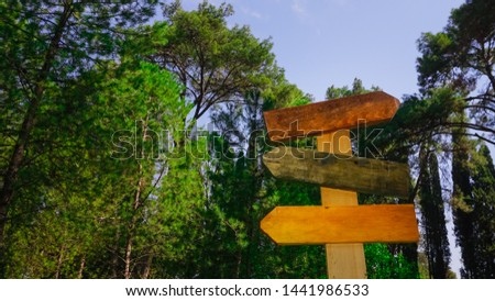 Empty signboards isolated on nature background. Colorful wooden signs. #1441986533