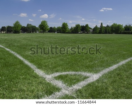 Empty soccer field under summer sun