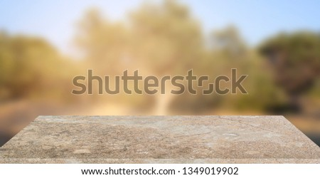 Empty stone texture with blurred soft light olive tree background. product display template. Business presentation. Mock up template for display. #1349019902