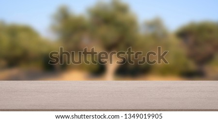 Empty stone texture with blurred soft light olive tree background. product display template. Business presentation. Mock up template for display. #1349019905