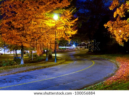 Empty street in a night time with some autumn trees