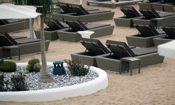 Empty sunbeds on a tropical beach, sandy beach by the sea. Summer vacation and holiday idea for tourism, pandemic, quarantine, Tenerife