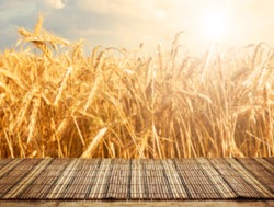 Empty table and defocused wheat field inbackground