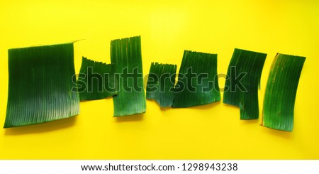 Empty templates for letters from green tropical palm leaves on yellow textured background. Original handmade idea from natural material for summer design #1298943238