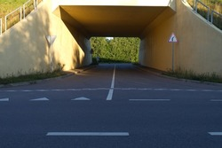 Empty underpass road with leafy green trees at the end of the tunnel