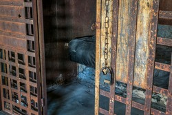 empty vintage jail cell with rusty bars and lock