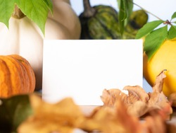 Empty white business card in front of decorative pumpkins on the table