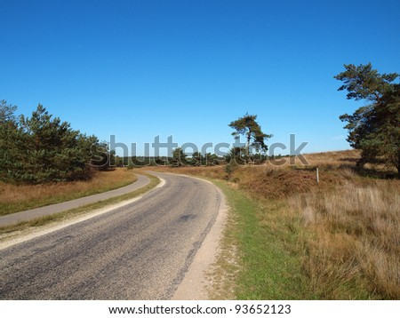 Empty winding country road in the Veluwe, Netherlands