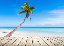Empty wooden pier on Caribbean Sea coast. Coconut palm grows on white sandy tropical beach on a background