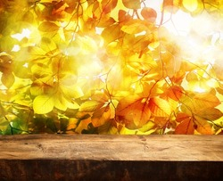 Empty wooden table and beautiful autumn leaves in background