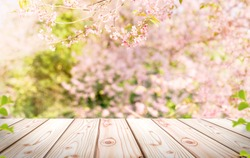 Empty wooden table in Sakura flower Park with garden bokeh background with a country outdoor theme, Template mock up for display of product