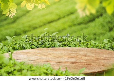 Empty wooden table or wooden desk with tea plantation nature background  with green leaves as frame Product display background concept