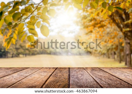 Empty wooden table with autumn for a catering or food background with a country outdoor theme,Template mock up for display of product