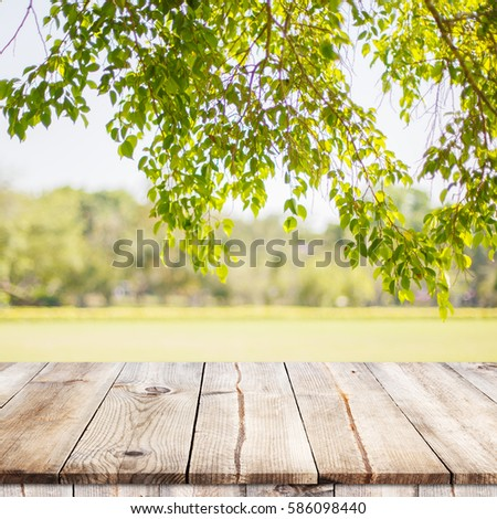 Empty wooden table with garden bokeh for a catering or food background with a country outdoor theme / Template mock up for display of product #586098440
