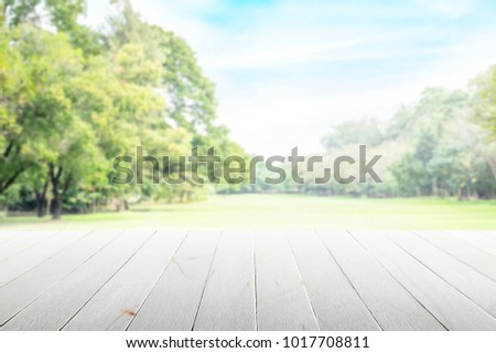 Empty wooden table with party in garden background blurred. #1017708811