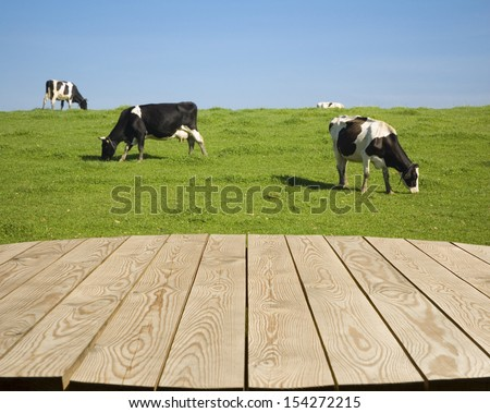 Empty wooden tabletop with black and white cows on green meadow in the background