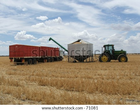Emptying wheat from silo into truck