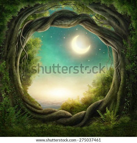 Enchanted dark forest in the moonlight