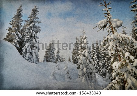 Enchanted forest in dark colors. Winter landscape in the winter forest. Christmas theme