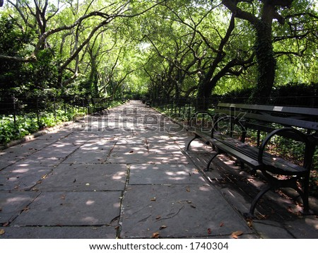 Enchanting walkway in Central Park with bench in the foreground (right). - stock photo