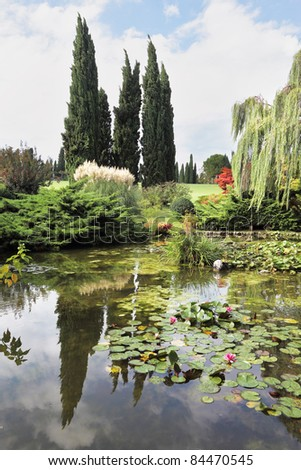 Enchantingly beautiful park-garden Sigurta. Shallow pond, cypress and lily
