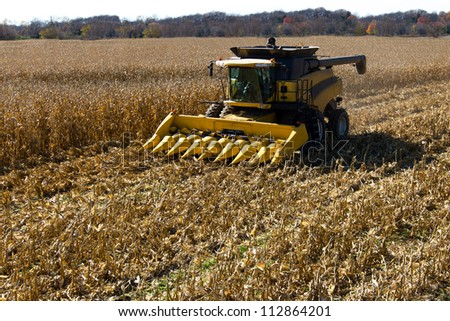 End of the summer, corn harvesting started.