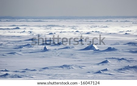 Endless Antarctic snowfields