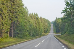 Endless asphalted hilly road ahead through dark green summer forest in south Sweden in July.