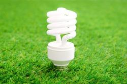 Energy efficient light bulb on green grass