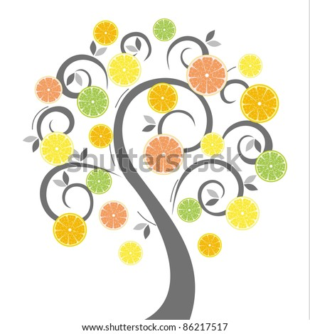 Energy fruit citrus tree for your design