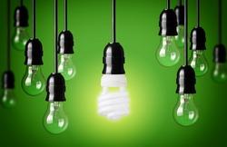 Energy saving and simple light bulbs.Green background