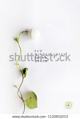 Energy saving eco lamp, made with green sprout and leaves,isolated on white background. Minimal nature concept.Think Green.Ecology Concept. Environmentally friendly planet.