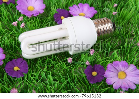 energy saving lamp on a meadow