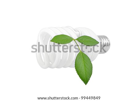Energy saving light bulb and plant on white background