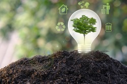 Energy saving light bulb and save world concept, sustainable development. Ecology concept