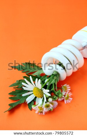 Energy saving lightbulb with daisies - a concept will save the planet