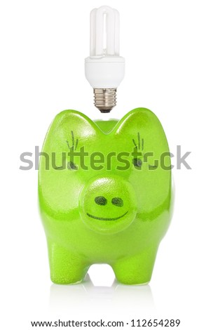 Energy savings concept. Green piggy-bank with compact fluorescent lightbulb.