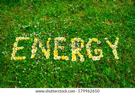 Energy word text written with flowers in green fresh grass background. #579962650